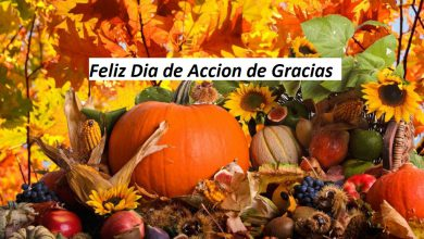 Photo of Feliz dia de accion de gracias imagenes gratis