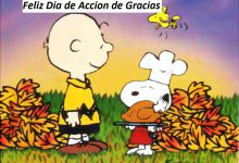 Photo of Feliz dia de accion de gracias snoopy