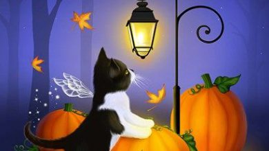Photo of Imagenes Lindas De Halloween