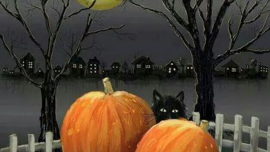 Photo of imagenes de halloween para niñas para celular